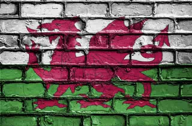 Welsh flag for St David's Day